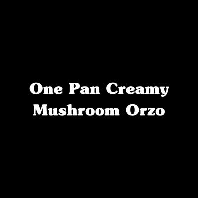 One Pot Creamy Mushroom Orzo